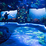 Foto: National Geographic Encounter